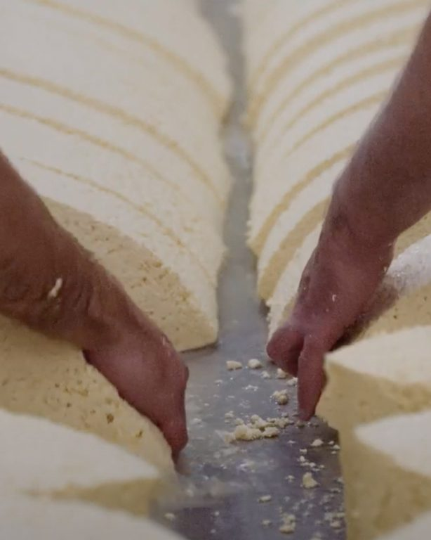 Watch our film 'Taking Time' with Quicke's Cheese
